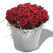 découvrez le pot aux roses