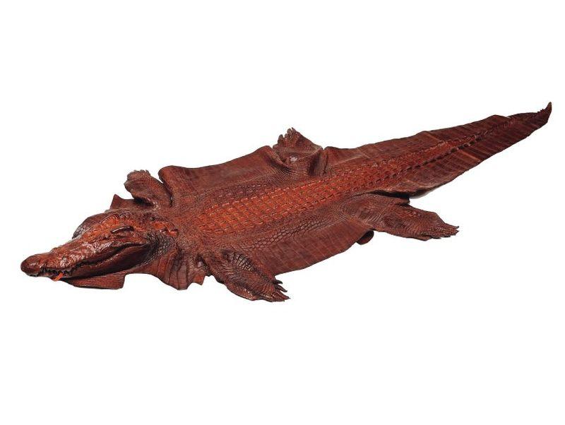 Un crocodile qui permet de montrer les différences entre le flanc et la queue