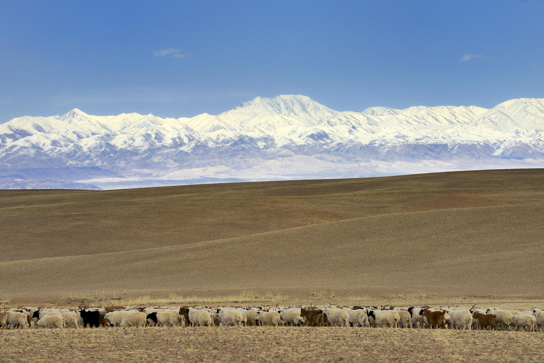 Mongolia. Bakankhongor province.